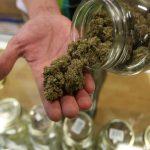 Medical Cannabis In Arizona
