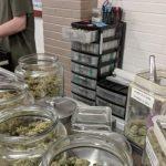 Visiting dispensaries1